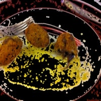 Foto tomada en Galería de Arte RepARTE por Republica d. el 2/4/2012