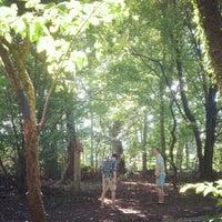 Photo taken at Cylburn Arboretum by Stefanie M. on 7/29/2012