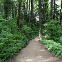 Foto tirada no(a) Forest Park - Wildwood Trail por Alissa em 5/19/2012
