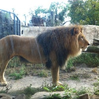 Photo taken at Zoo Dresden by Diego J. on 8/22/2012