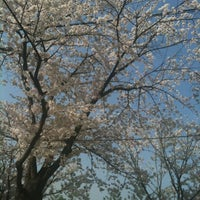 Photo taken at Yeouido Hangang Park by ej* on 4/19/2012