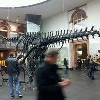 Das Foto wurde bei Senckenberg Naturmuseum von tugden am 2/19/2012 aufgenommen