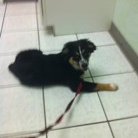 Photo taken at Newman Veterinary Center by Pollyann B. on 5/7/2012