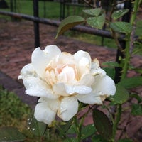 Photo taken at Sigma Nu Memorial Rose Arbor by Christopher B. on 7/19/2012
