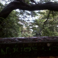 Photo taken at Hanging Gardens by Vaibhav T. on 7/28/2012