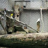 Photo taken at Het Papagaaienhuis by joshua t. on 6/30/2012