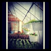 Photo taken at Bergman Orchards by Jennifer D. on 4/7/2012