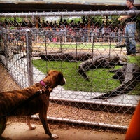 Photo taken at Reptile Gardens by Tyler D. on 7/7/2012