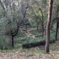 Foto scattata a Bosco la Ragnaia da Francesco Van Buuren il 4/25/2012