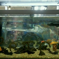 Photo taken at Petco by Kevin R. on 2/11/2012
