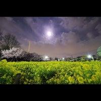 4/6/2012にleon_and_venusが蘆花恒春園 (蘆花公園)で撮った写真