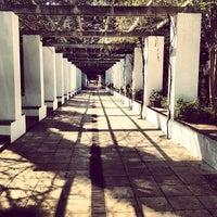3/17/2012にTiago P.がJardins de Laribalで撮った写真