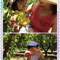 Photo taken at Bacchini's Fruit Tree by Marin N. on 6/8/2012