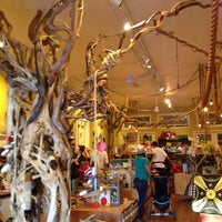 Photo taken at Paxton Gate's Curiosities for Kids by Jan on 2/5/2012