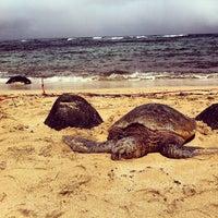 Foto tomada en Laniakea (Turtle) Beach por MattersOfGrey.com el 6/19/2012