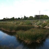 Photo taken at Dominguez Gap Wetlands by Darleen P. on 4/27/2012