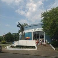 Photo taken at Aquarium of Niagara by Andrey V. on 8/8/2012