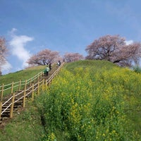 Photo taken at さきたま古墳公園 by Masaya M. on 4/15/2012