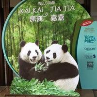 Foto tirada no(a) Singapore Zoo por Vivi V. em 9/8/2012