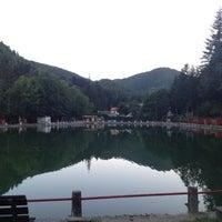 Photo taken at Ristorante Lago lo Specchio Spedaletto by Giammarco C. on 8/2/2012