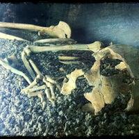 Foto tomada en Museu d'Arqueologia de Catalunya por Lena K. el 3/1/2012