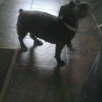 Photo taken at Suburban Veterinary Clinic by Burton H. on 5/14/2012
