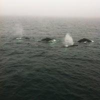 Photo taken at Atlantic Ocean by Cyberntz on 5/25/2012