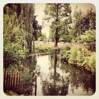Photo prise au Queen Mary's Gardens par Andrea R. le9/9/2012