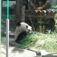 Photo taken at Ueno Zoo by Kazuaki S. on 5/19/2012