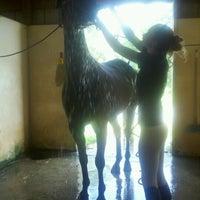 Photo taken at Terrells Creek Farm by Pam C. on 7/18/2012