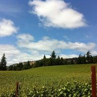 Foto tomada en Toulouse Vineyards por Shaun B. el 5/28/2012
