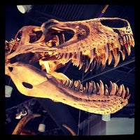 Photo taken at North Carolina Museum of Natural Sciences by Shana S. on 9/11/2012