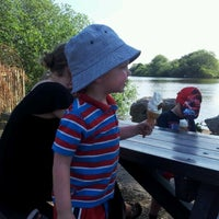 Photo taken at Attenborough Nature Reserve by Martin P. on 5/27/2012
