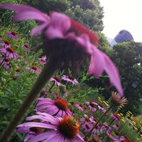 7/8/2012 tarihinde Alberto R.ziyaretçi tarafından Toronto Music Garden'de çekilen fotoğraf
