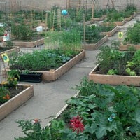 Photo taken at Vedgewater Community Garden-Peterson Garden Project by Cheryl H. on 6/30/2012
