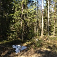 Photo taken at Pitkäkosken luonnonsuojelualue by Sanna A. on 4/29/2012