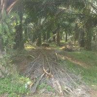 Photo taken at Simpang Jengka 20 by Yusoff I. on 6/23/2012