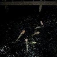 Photo taken at Ruen Pae Fishing Park by KeNg N. on 5/27/2012