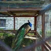 "Photo taken at Хотел  и Механа ""Извора"" Арбанаси (Hotel Izvora Arbanasi) by Gergana H. on 4/12/2012"