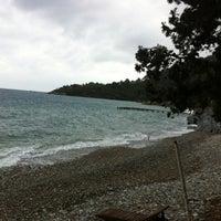 4/14/2012 tarihinde Enguri E.ziyaretçi tarafından Mazı'de çekilen fotoğraf