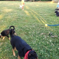 Photo taken at Hawthorn St Dog Park by Jim N. on 7/4/2012