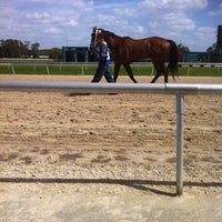 Photo taken at Tampa Bay Downs by Ashley K. on 3/7/2012