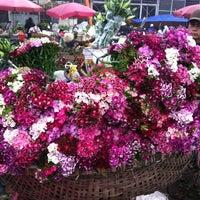 Photo taken at Chợ Hoa Nghi Tàm by tuan n. on 3/8/2012