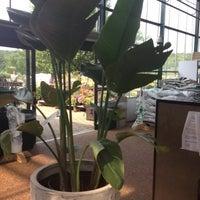 ... Photo Taken At Petitti Garden Center By Kelly U0026amp;amp; ...