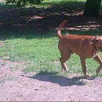 Photo taken at Ridgefield Bark Park by Debralee H. on 7/16/2012
