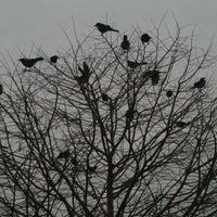 Снимок сделан в Sam's Club пользователем Tui S. 2/12/2012