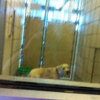Photo taken at Humane Society of El Paso by NeSs on 6/2/2012