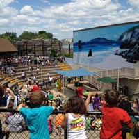 Photo taken at Como Zoo - Seal House And Show by Andy L. on 6/2/2012