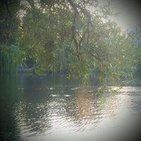 Снимок сделан в Голосеевская площадь пользователем Elena S. 7/8/2012