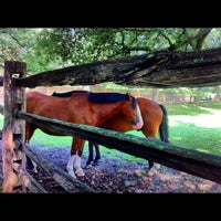 Photo taken at Colonial Williamsburg by Jeff K. on 7/1/2012